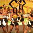 Janet Djan Crowned Miss Ghana UK 2013