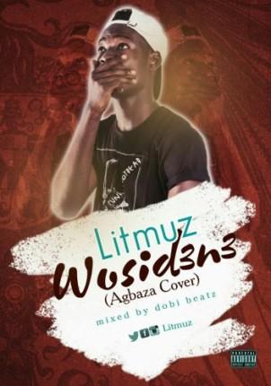 litmuz-wosid3n3-351x500