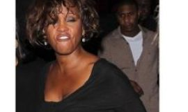 Did Whitney Houston 'party heavily' on the eve of her tragic death?