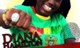 """Diana Antwi Hamilton Launch """"Peace Endorsement Tour"""""""