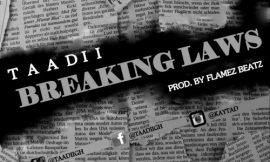 Breaking Laws ~ Taadi