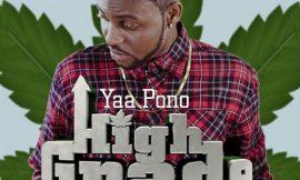 High Grade ~ Yaa Pono