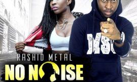 No Noise (Baafira Remix) ft. AK Songstress ~ Rashid Metal
