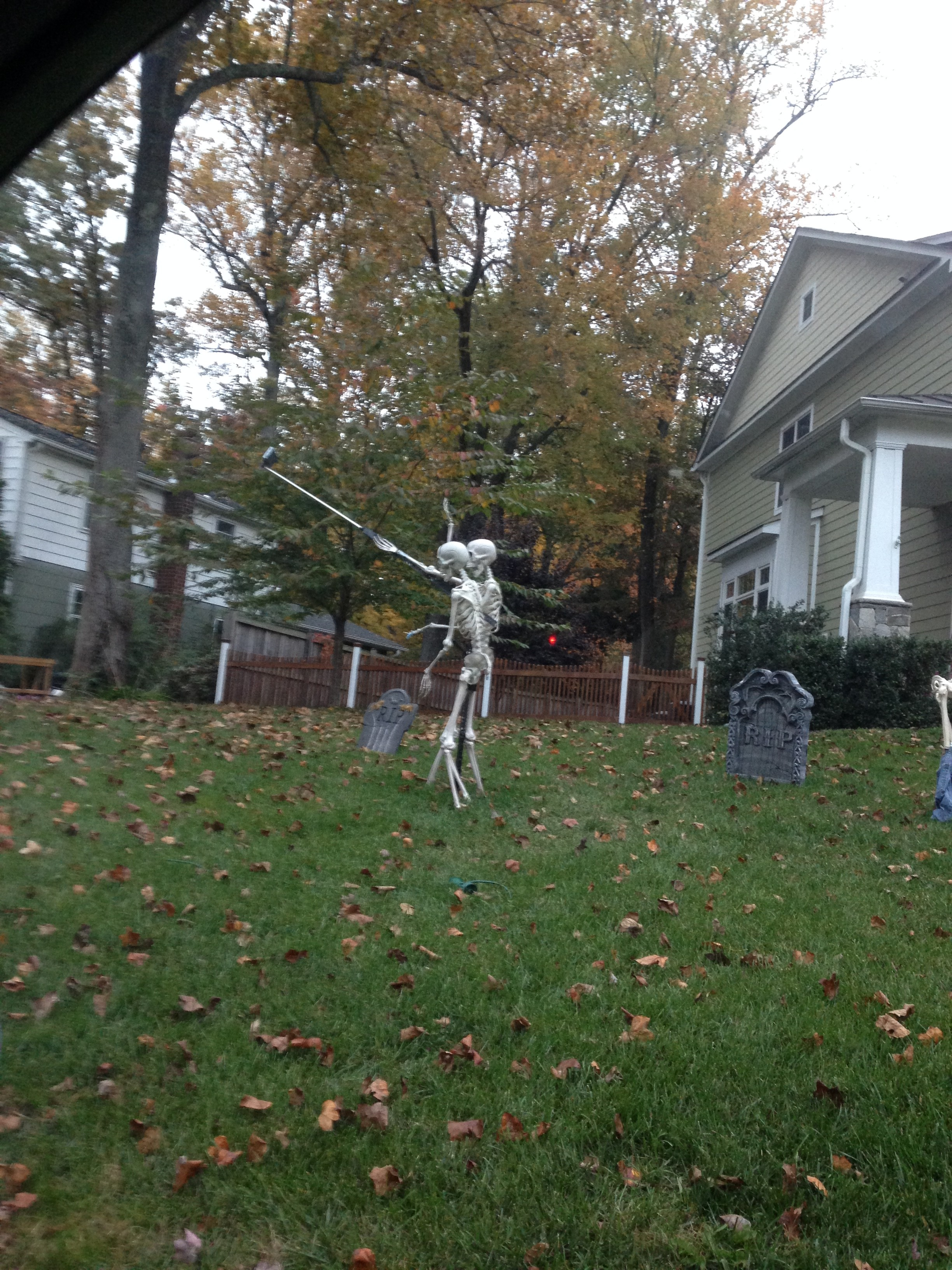 Funniest Halloween photo