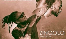 Zingolo ft Joey B & Pappy Kojo ~ Samini