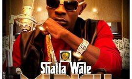 "Shatta Wale releases ""Mi Rich"" (Rich Riddim)"
