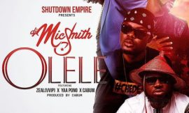 Official video: Olele by Dj Mic Smith Ft Yaa Pono, Zeal & Cabum
