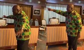 Video: Akufo-Addo celebrates Tottenham's Champions League win
