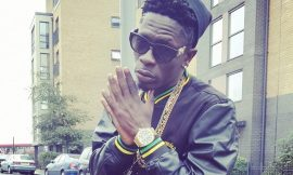 It will be illogical for me to deliberately ruin VGMA@20 – Shatta Wale