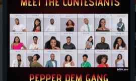 "'Pepper dem"" housemates impersonate popular Nigerian celebrities at BBNaija (S4) party"