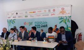 Ghana praised for supporting Vis-à-vis Festival