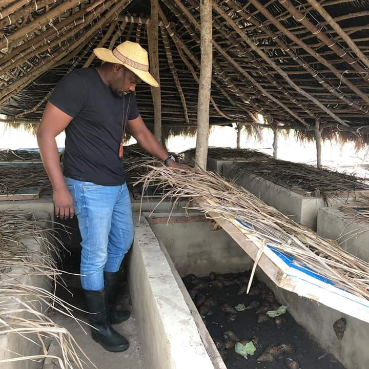 I am a proud farmer – John Dumelo